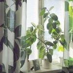 Tư vấn thiết kế nhà đẹp với 5 cách chọn rèm cửa thông minh