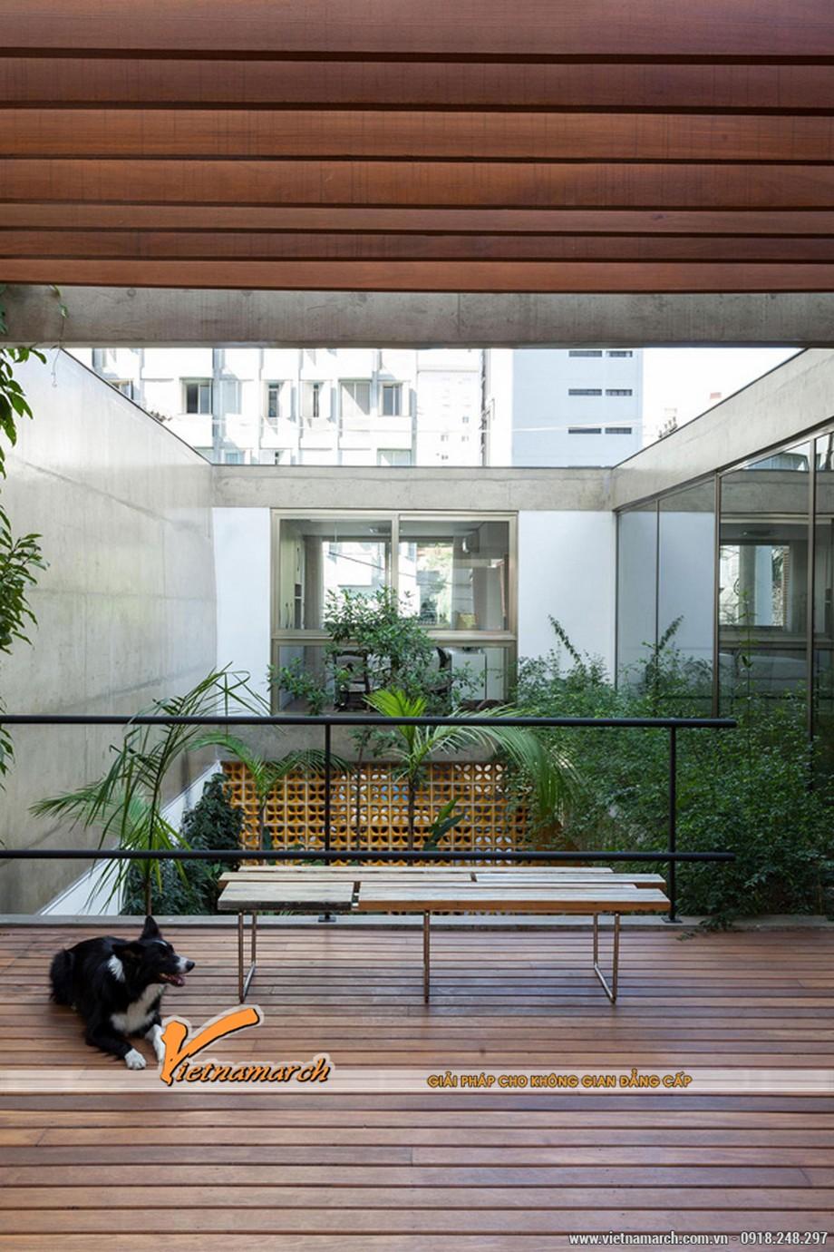 Nội thất làm bằng gỗ là đề tài mà căn hộ lựa chọn