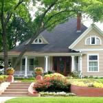 6 loại cây nên có trong nhà bạn giúp nâng cao sức khỏe tăng ngân lượng