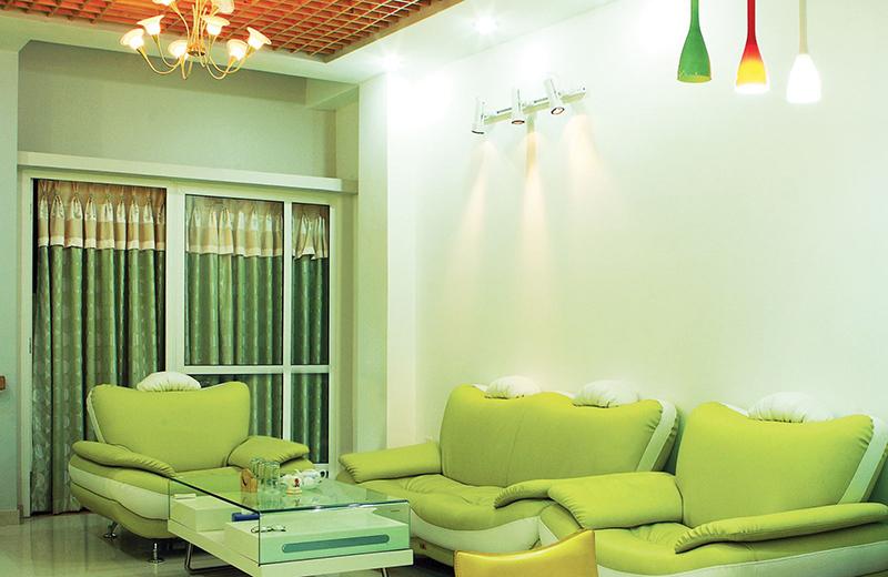 Gia chủ mệnh mộc nên chọn trang trí nhà bằng màu xanh lá cây - tư vấn kiến trúc phong thủy