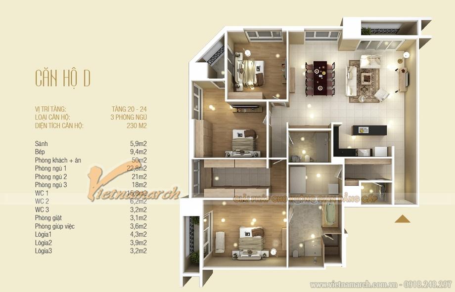 Mặt bằng hiện trạng căn hộ D chung cư D'. LE ROI SOLEIL – Quảng An – Tân Hoàng Minh