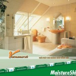 Tấm thạch cao chống ẩm Knauf MoistShield