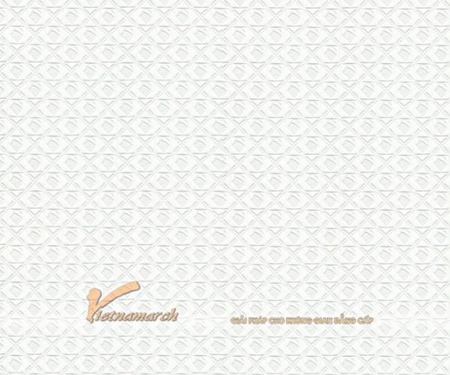 Tấm thạch cao phue nhựa PVC Lili VT20
