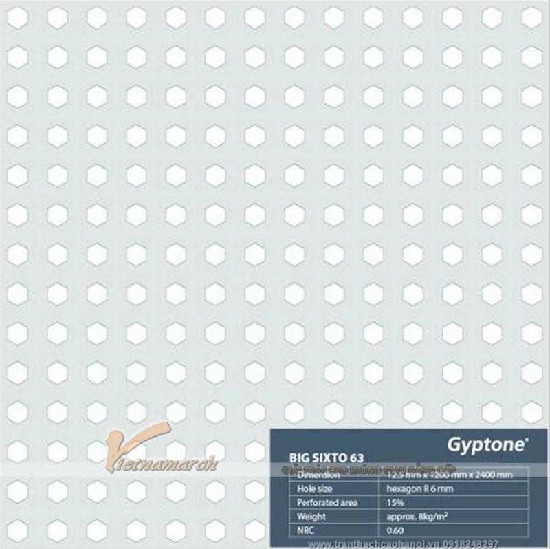 Tấm trần thạch cao tiêu âm Gyproc