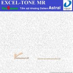 Tấm Trần Sợi Khoáng Astral – Excel-Tone MR