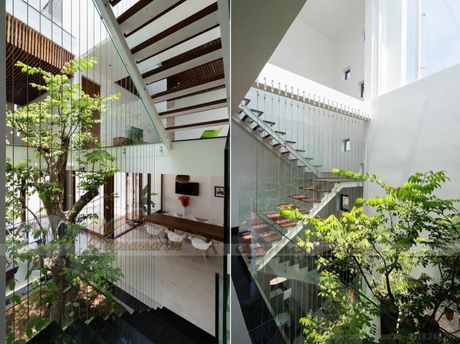 Thiết kế nhà đẹp, nhà ở tương lai chú trọng đến việc mang cây xanh vào không gian sống