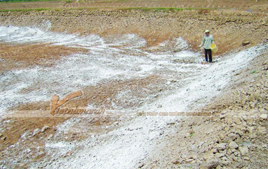 Ứng dụng của bột thạch cao trong nông nghiệp