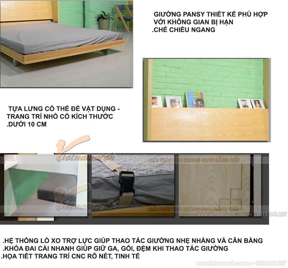 mau-giuong-gap-thong-minh08