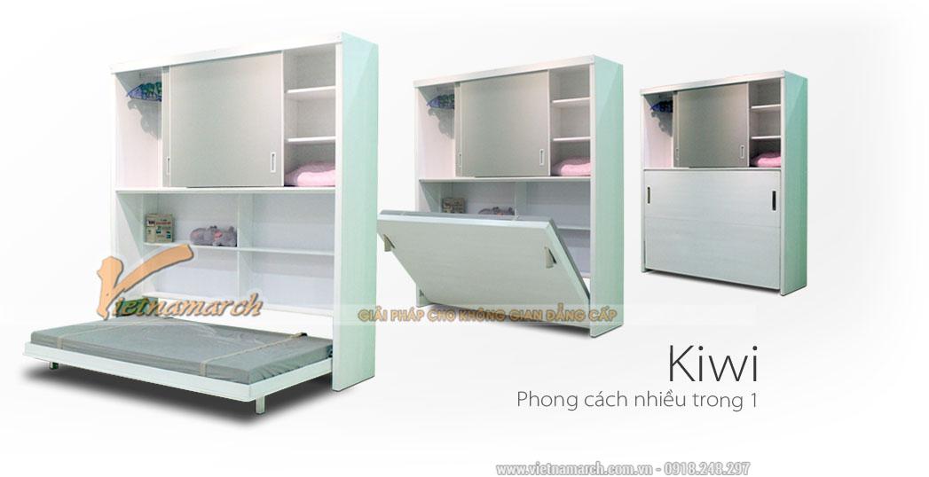 Mẫu tủ giường đa năng cho không gian nhỏ