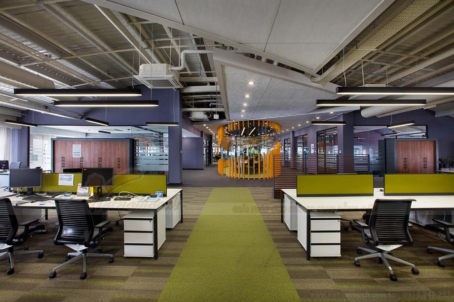 Thiết kế cowowking space với màu sắc bắt mắt hài hòa
