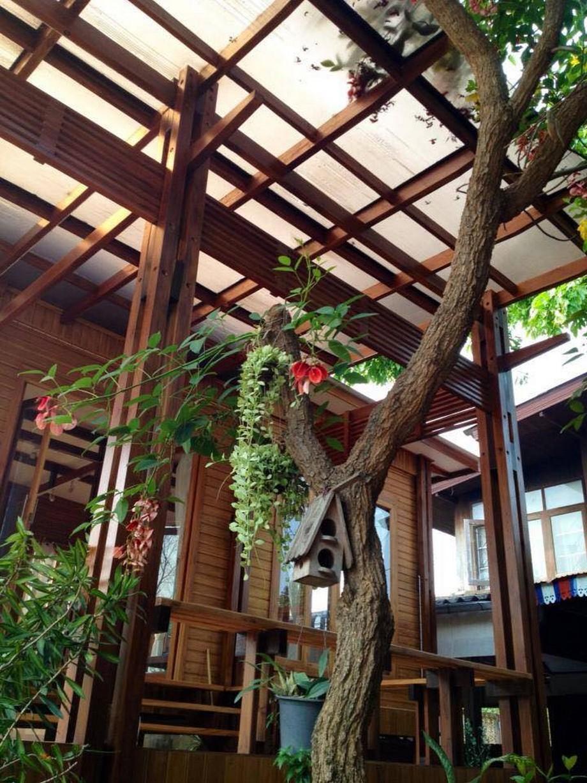 Ngôi nhà gỗ đẹp nhất Đông Nam Á nép mình trong lùm cây xanh tươi mát