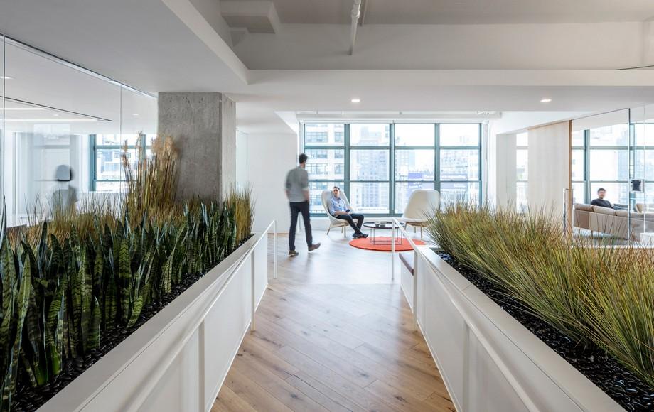 Thiết kế không gian làm việc chung tối giản về màu sắc