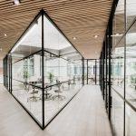 Dự án thiết kế không gian làm việc chung coworking space tận dụng sân thượng tầng cao nhất của một tòa nhà