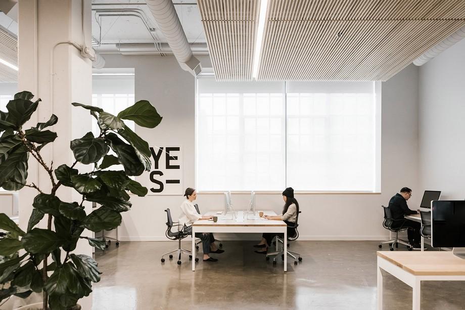 Thiết kế khu vực làm việc trong không gian làm việc chung