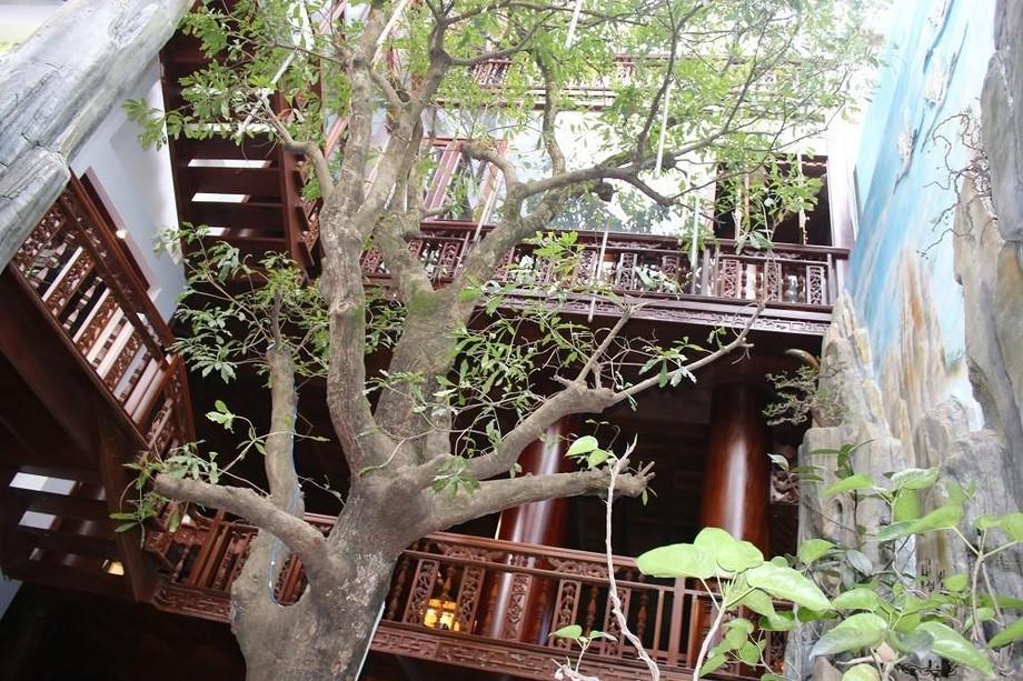 Nhà gỗ đẹp ở Hà Tĩnh nhìn từ dưới lên