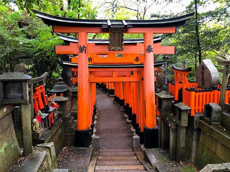 Cổng Torii là biểu tượng truyền thống của Nhật Bản