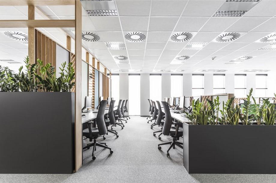 Thiết kế nội thất văn phòng tại Ba Lan sử dụng trần thả thạch cao