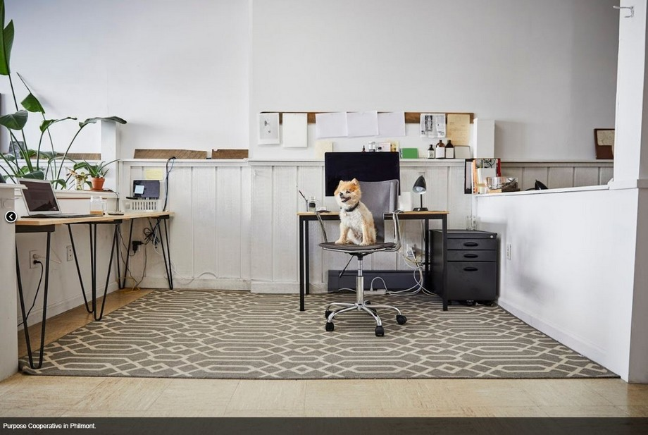 Không gian làm việc chung tại Hudson Valley -Purpose Cooperative