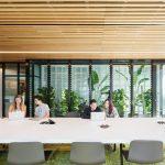 Mẫu thiết kế văn phòng cho thuê hiện đại, đẳng cấp