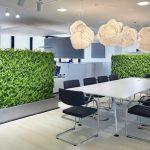 Thiết kế cây xanh trong văn phòng, mẫu cây xanh hợp mệnh 12 con giáp trong văn phòng