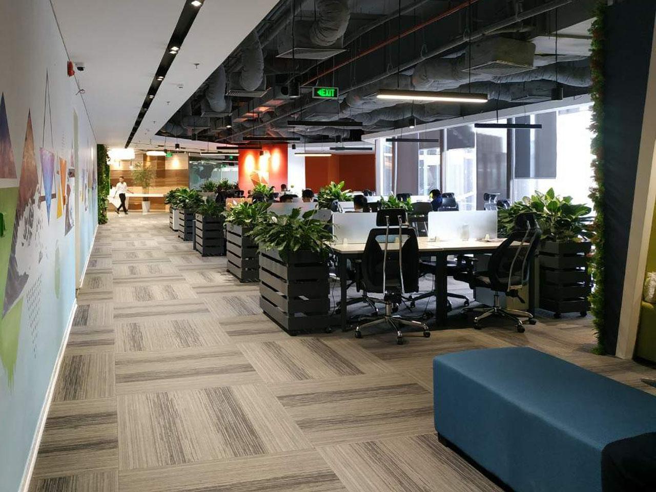 Khu văn phòng làm việc chung - Với thiết kế không gian mở