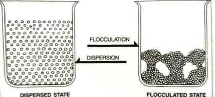 Lý giải nguyên nhân ứng dụng bột thạch cao trong nông nghiệp