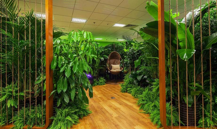 Một góc thú vị giúp nhân viên có thể vừa nghỉ ngơi thư giãn , vừa hòa mình vào không gian thiên nhiên thực thụ
