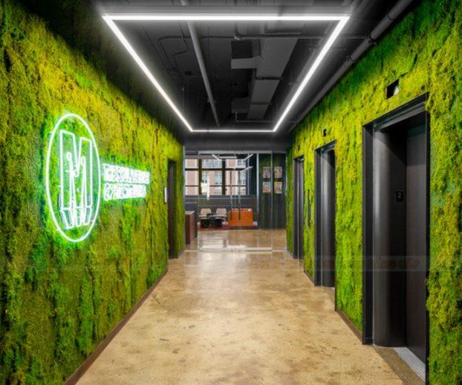 Phong cách thiết kế văn phòng xanh trong thiết kế nội thất văn phòng