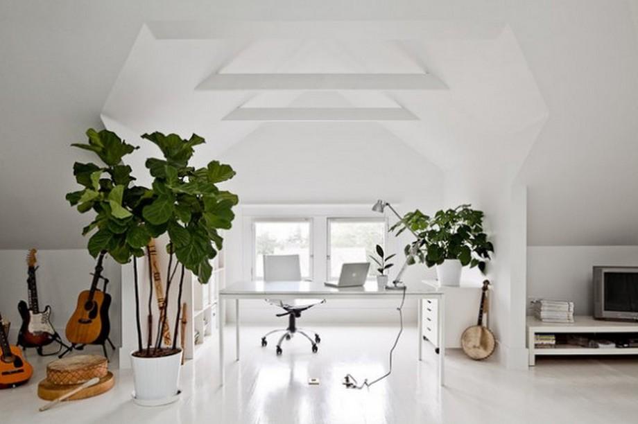 Thiết kế văn phòng tại nhà nhỏ khá đẹp mắt với cây xanh và các vật dụng trang trí