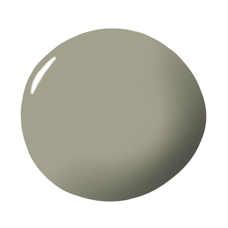 Màu o liu trong văn phòng hòa bình-olive green
