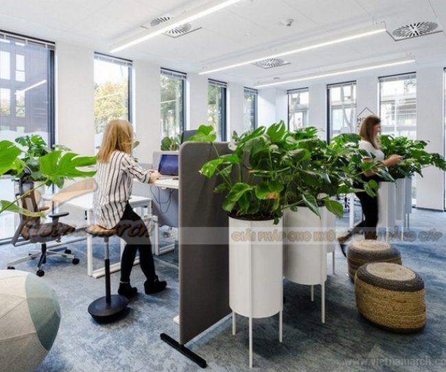 Những lợi ích của thiết kế văn phòng xanh