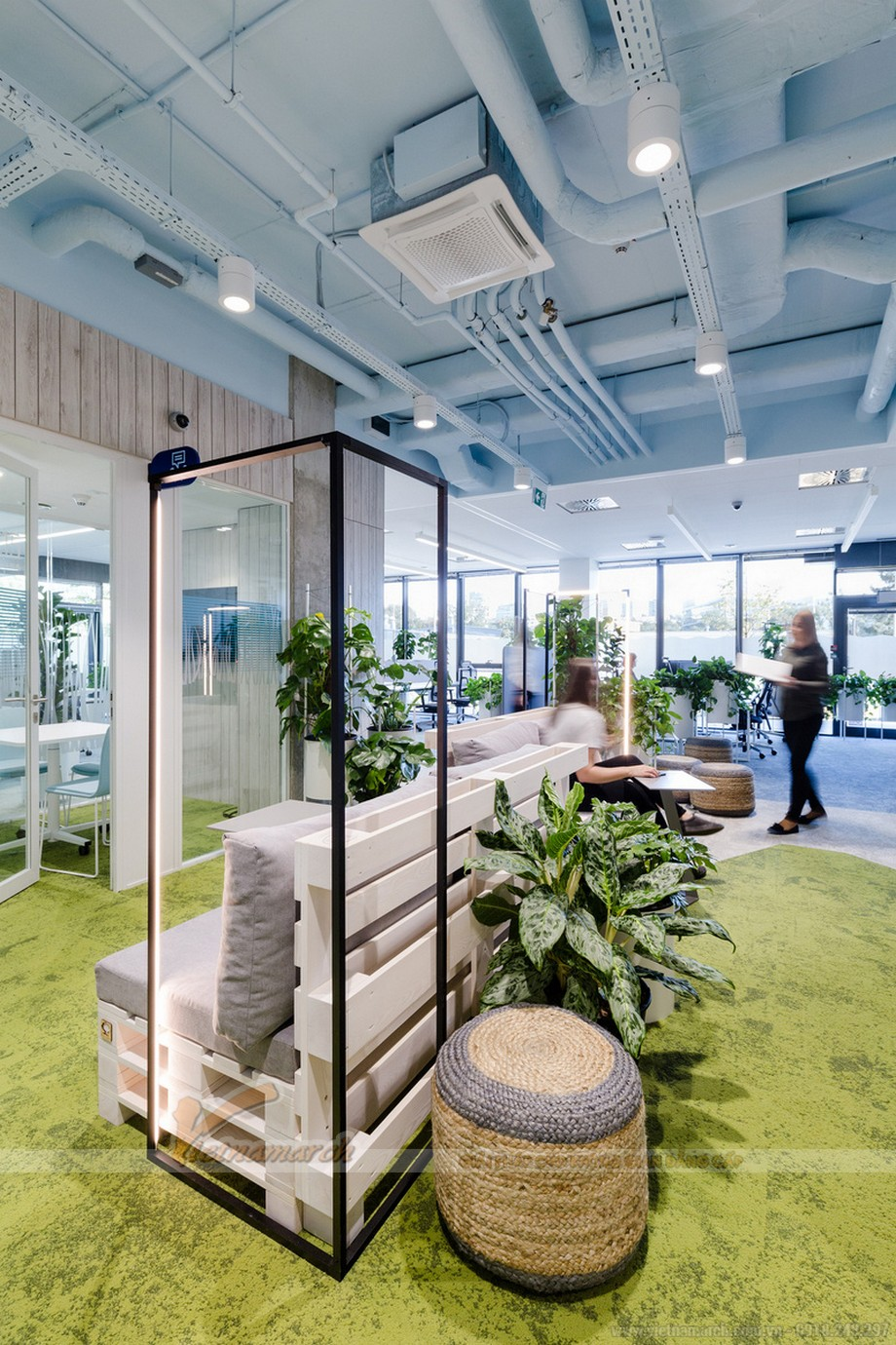 Cách bố trí cây xanh trong văn phòng