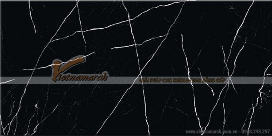 Kích thước gạchốp tường Viglacera 60x120