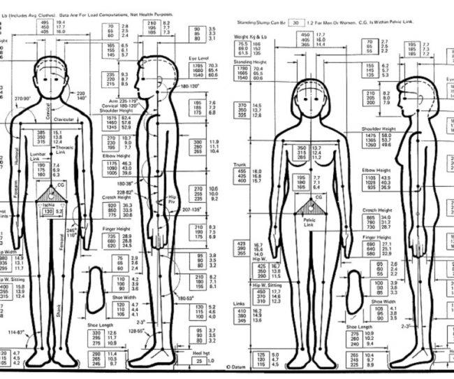 Ứng dụng nhân trắc học trong thiết kế nội thất