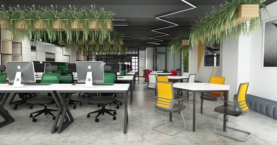 Văn phòng xanh