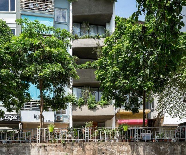 Thiết kế nhà phố đẹp với mặt tiền với cây xanh.
