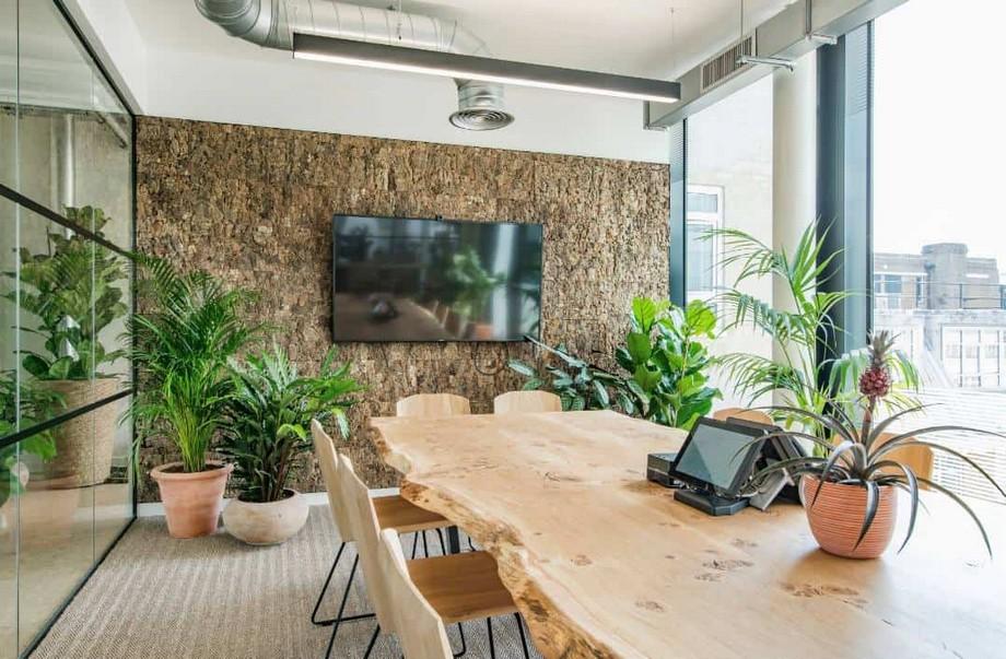 Thiết kế văn phòng xanh Biophilic