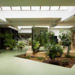 Những nguyên tắc cơ bản cần lưu ý khi thiết kế sân vườn văn phòng