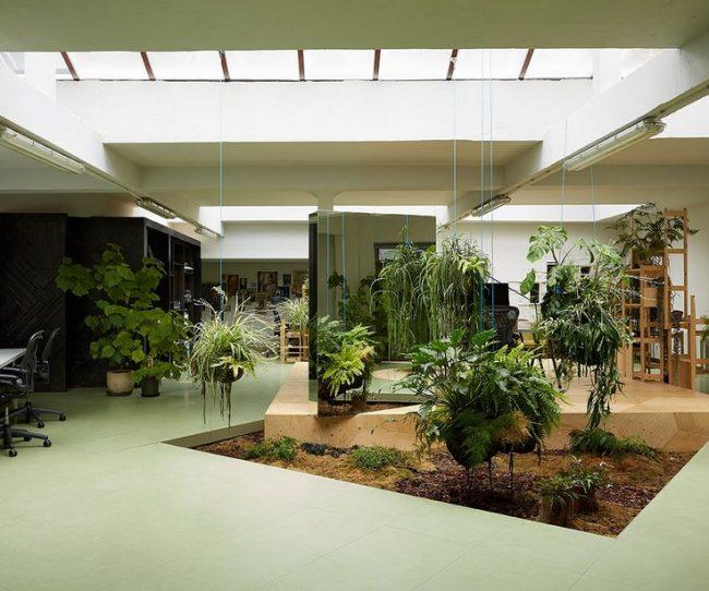 thiết kế sân vườn văn phòng