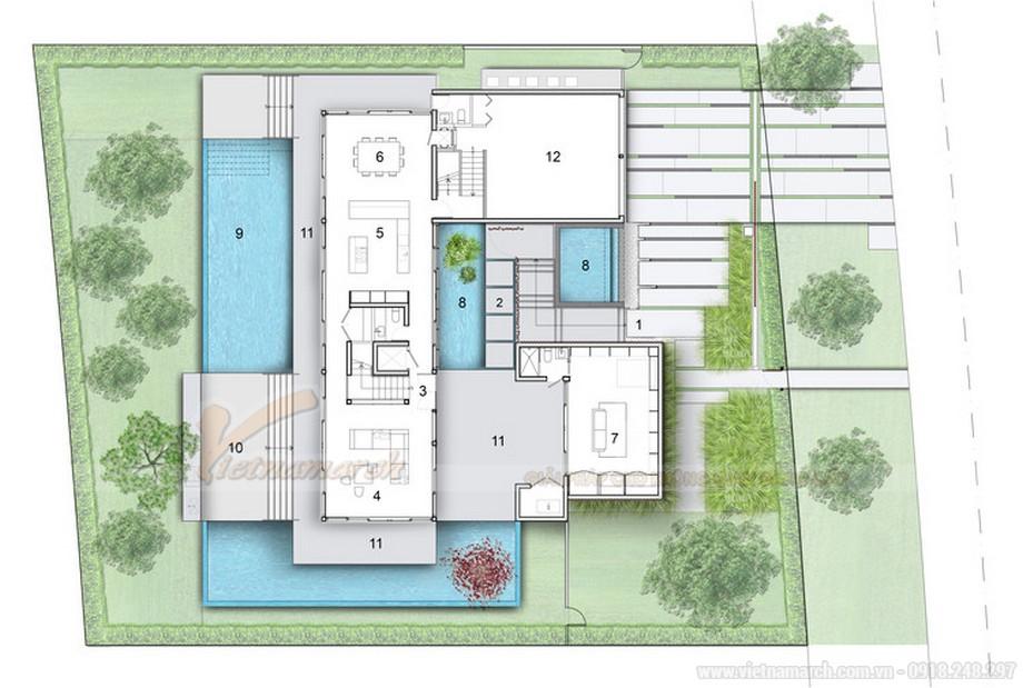 concept thiết kế nhà phố có bể bơi