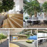 [PA2] Phương án thiết kế văn phòng Bộ kế hoạch & Đầu tư tại Tôn Thất Thuyết: Vườn ươm khởi nghiệp