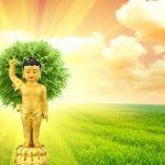 Lễ Phật đản 2021 là ngày nào? Các Phật tử nên làm gì vào ngày Phật đản?