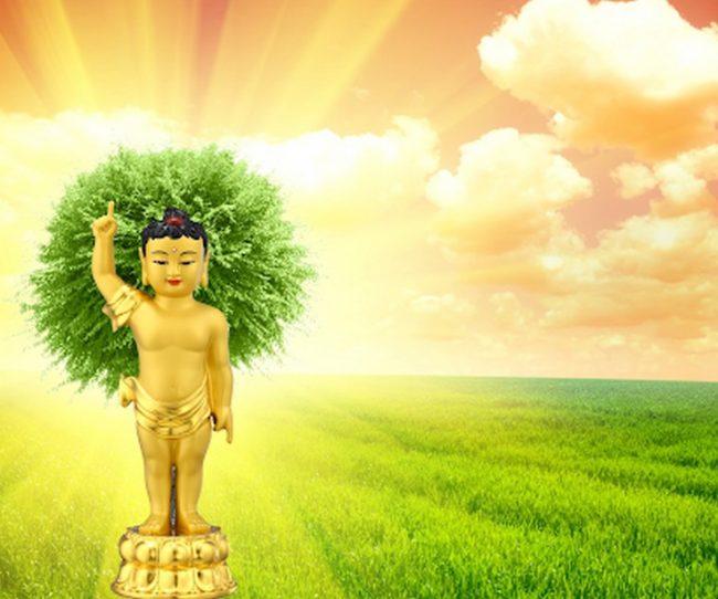 Nguồn gốc ngày lễ Phật đản