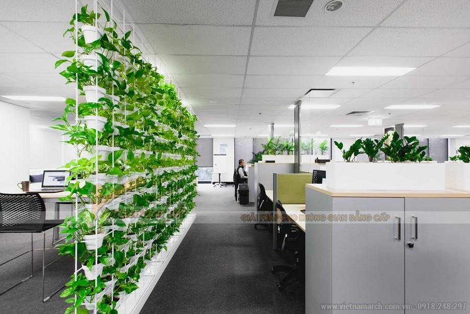 Thiết kế văn phòng ở Đà Nẵng không gian xanh